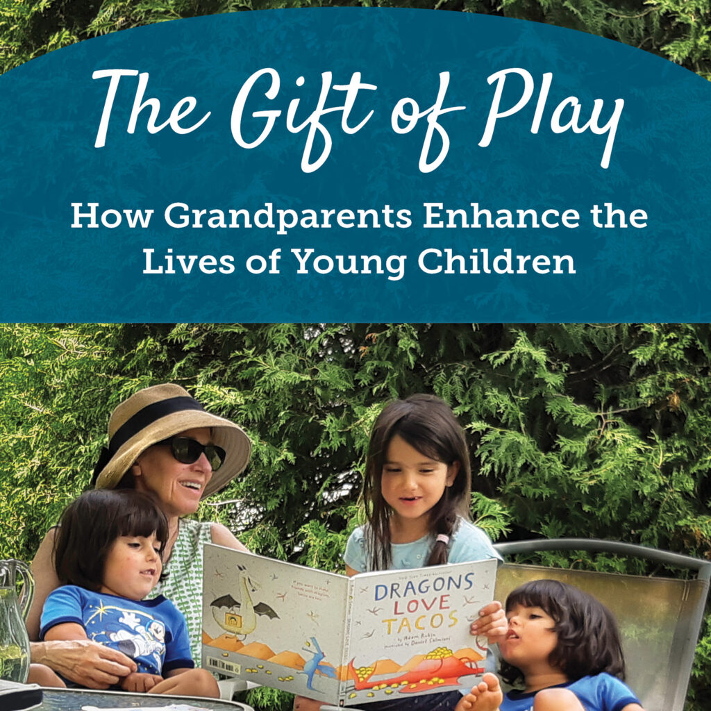 Book cover of the The Gift of Play